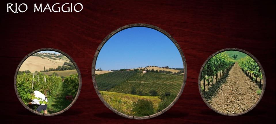 Riomaggio Winery